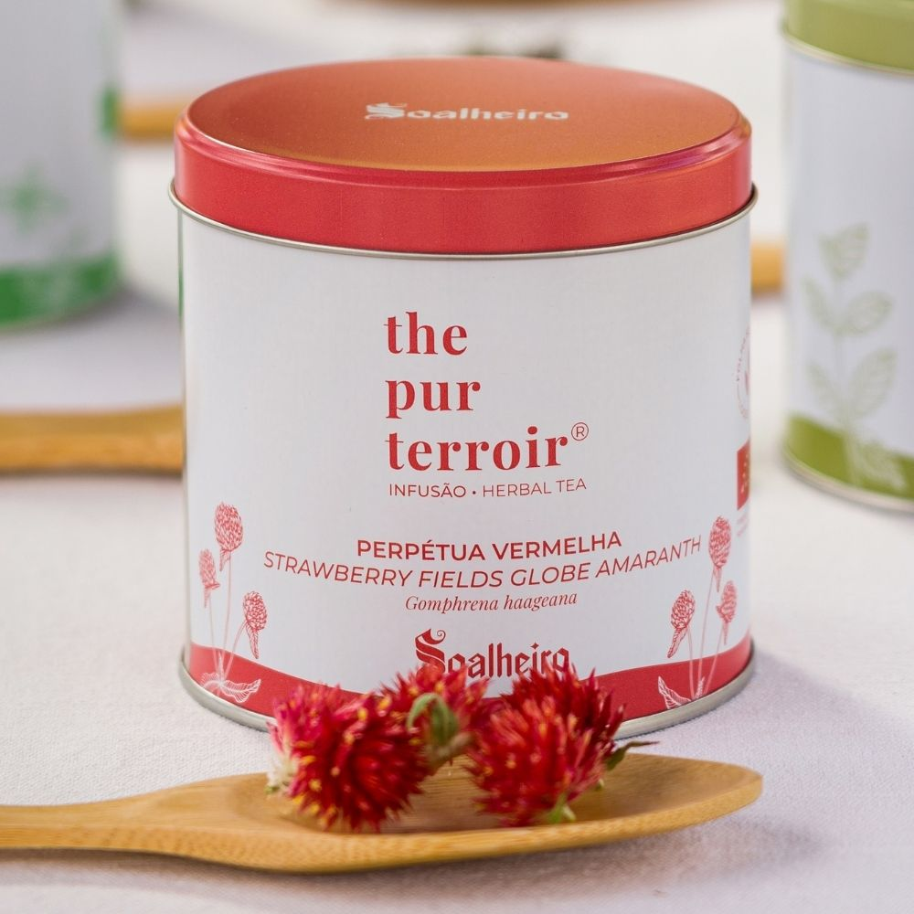 Strawberry-Fields-Globe-Amaranth-Soalheiro-The-Pur-Terroir