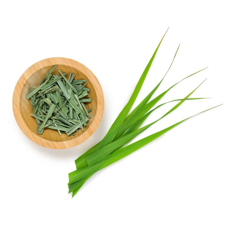 Lemongrass Soalheiro the Pur Terroir